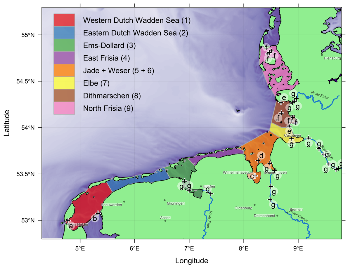 Map of the areas covered by the beam trawl surveys
