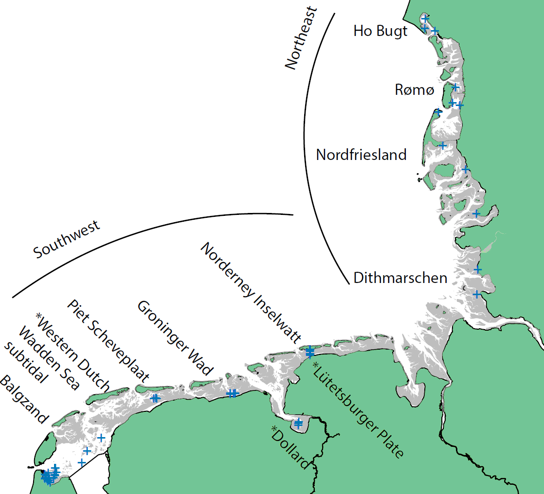 Macrozoobenthos monitoring areas in the Wadden Sea divided into two sub regions Northeast and Southwest
